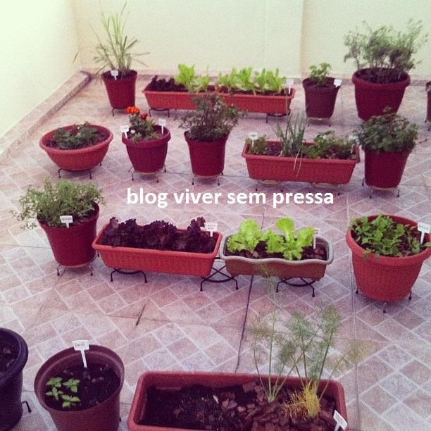 horta 1 - blog