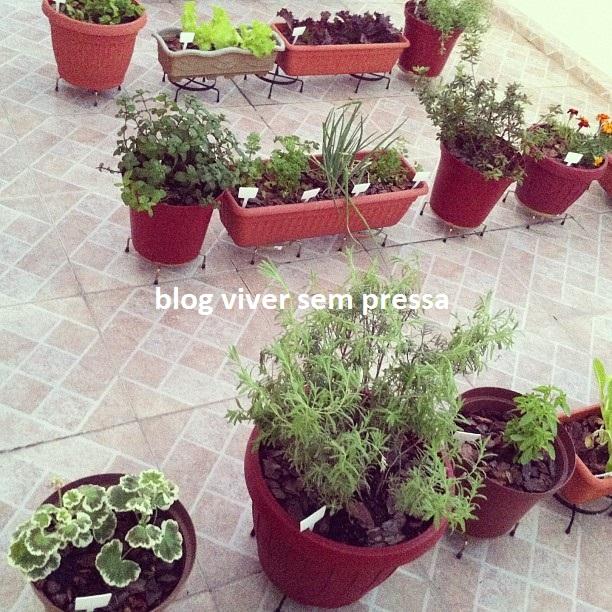 horta 2 - blog