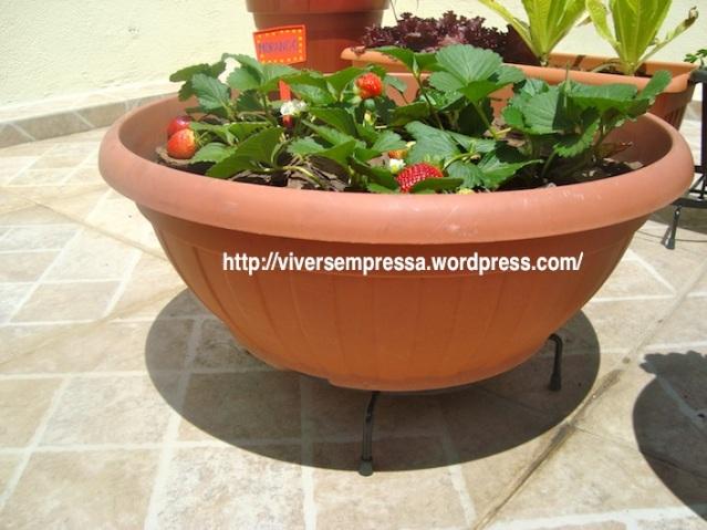 Suporte para os vasos das plantas