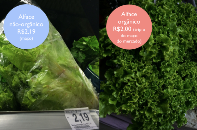 mito_organico_alface