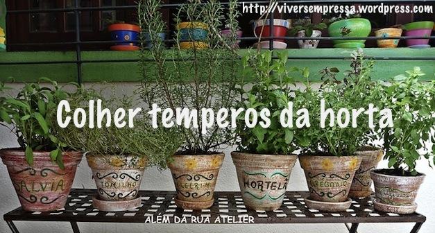 Fonte: www.unimedvivasaude.blogspot.com.br/2011/05/aprenda-cultivar-temperos-em-casa.html